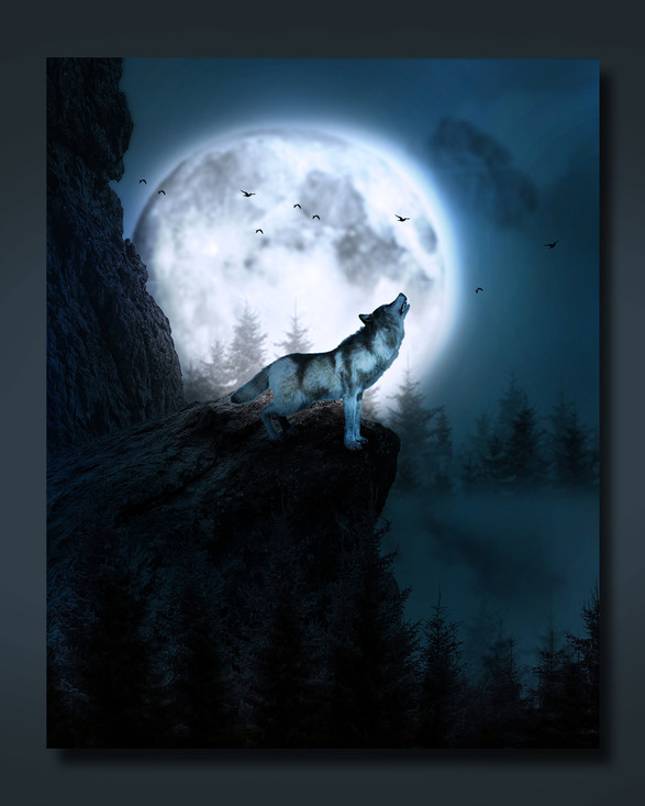 Wolf Image Manipulation
