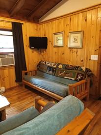 Snowshoe Livingroom other angle