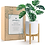 Thumbnail: Plant Stand - Bamboo