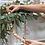Thumbnail: Wood Bead Garland | Geo