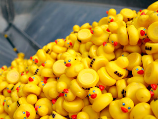 The Great Columbus Duck Race & Run