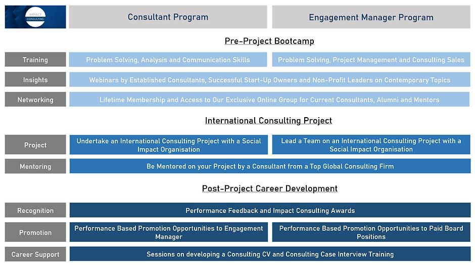 Consultant Program.PNG