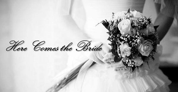 Here Comes the Bride (Series Banner).jpg