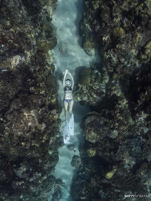 Coron - Busuanga - Apo Reef Expeditions