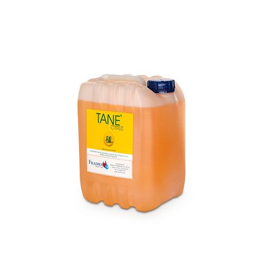 Tane Citrus 10 lts (Dilución 2 ml por L Rendimiento 5,000 lts)