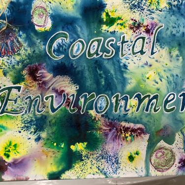 Coastal Environment, Year 11