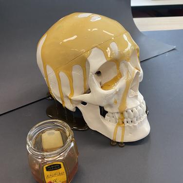 Yr 12 Skulls project