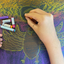 Owls oil pastel