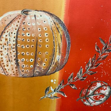 Year 10 Fine Art Organic Forms