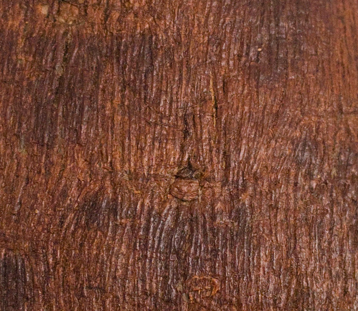 bark cloth detail