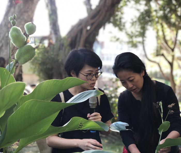 社區植物導覽2