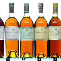 yquem_collection1.jpg