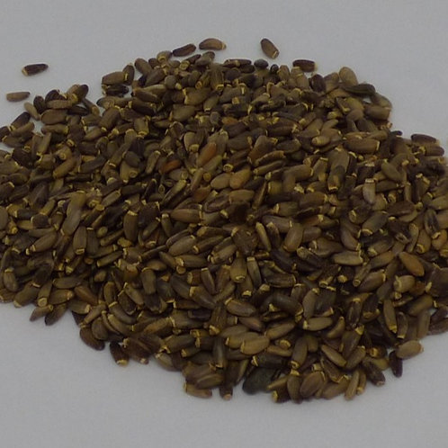 Saint Mary's Thistle seeds - whole, 500gm