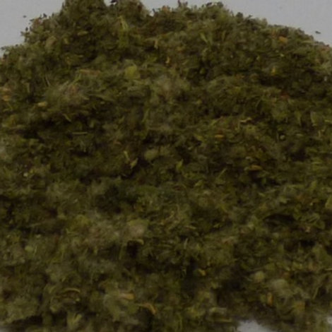 White Horehound, 100gm