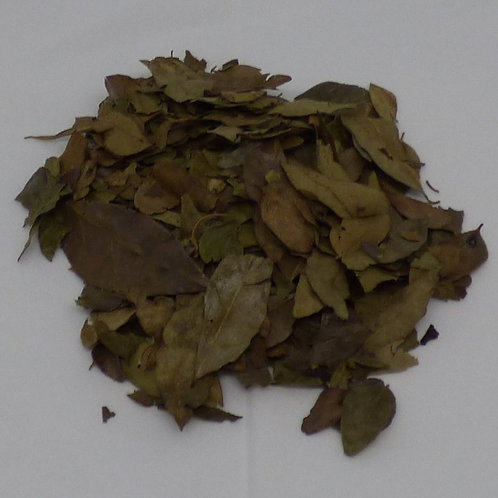 Curry Leaves, 20gm