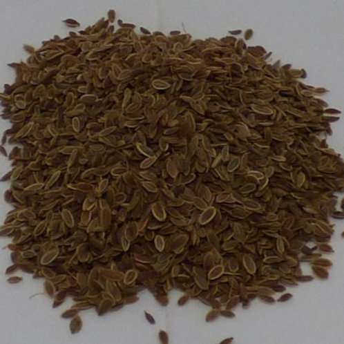 Dill Seed, 20gm