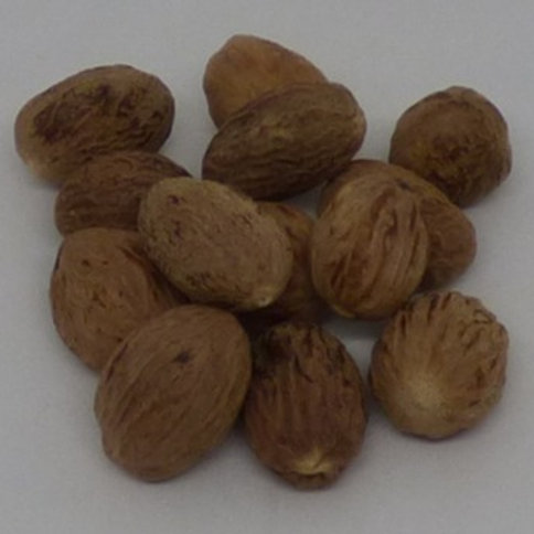 Nutmeg - whole, 50gm