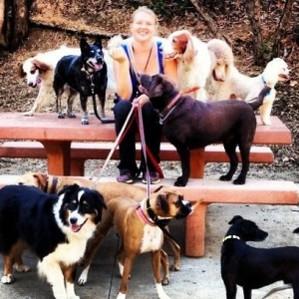 kara dogs.jpg