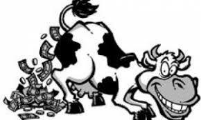 cowpooping dollars.jpg