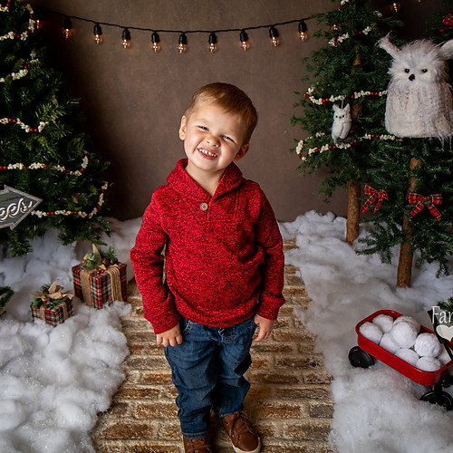 Holmes Christmas Mini