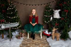 Christmas Mini 2020 (46)