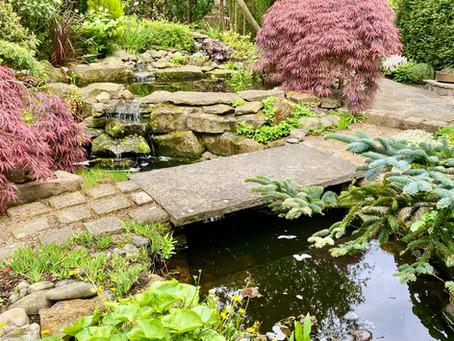 A Japanese Garden in Lancashire