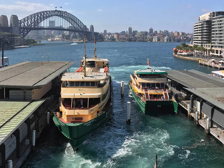 7 Manly Ferry Tidbits to Ponder