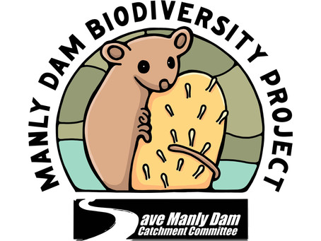 Embrace Your Inner Nerd! And Help Save Manly Dam