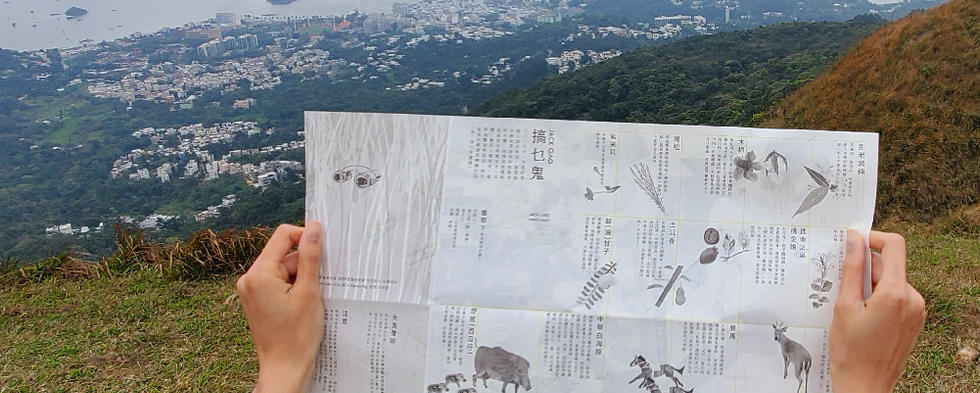 product shot of CHIN-06.jpg