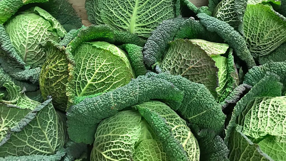 Savoy Cabbage each