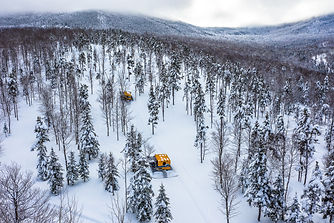 Cat Skiing Test Run 2018-6.jpg