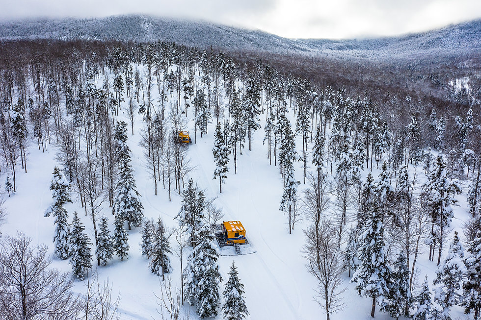 Cat Skiing Test Run 2018-6.jpg