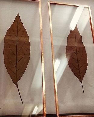 押し葉のガラスプレート
