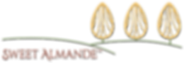 SA_Logo_HOME.png