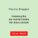 Formação_de_inspetores_Marcia_Biaggio.