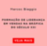 Liderança_de_vendas_Marcos_Biaggio.png