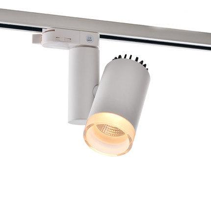 Трековый светильник DT-009BW60 белый со стеклянным ободком