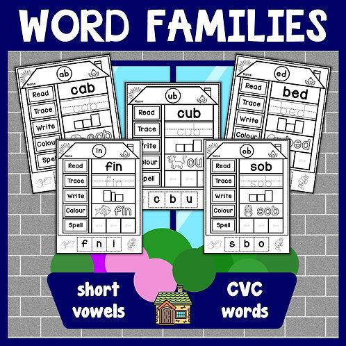 CVC Words Families Activity Worksheets