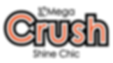PSMegashineChic-Logo_letter-01.png