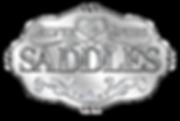 SSsaddles_new1.png