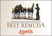 Best-Remuda-logo-vector-1.png