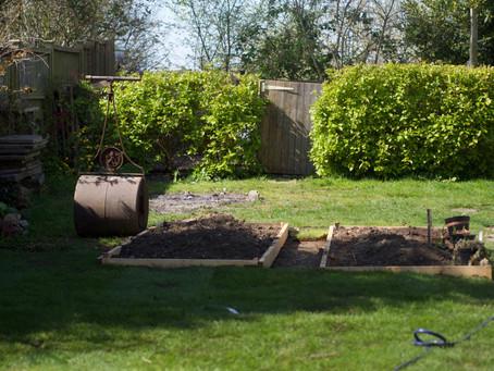 A little garden update.