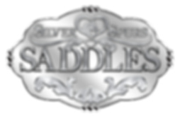 SSsaddles_new1.png