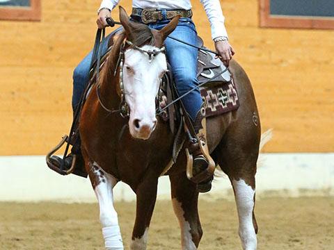 sjoeke-riding-12-crop-u2041