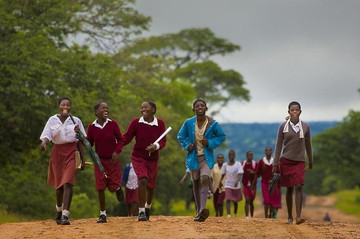 20 400 primary school children dropped out of school