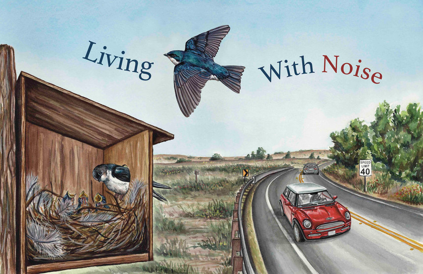 Living With Noise