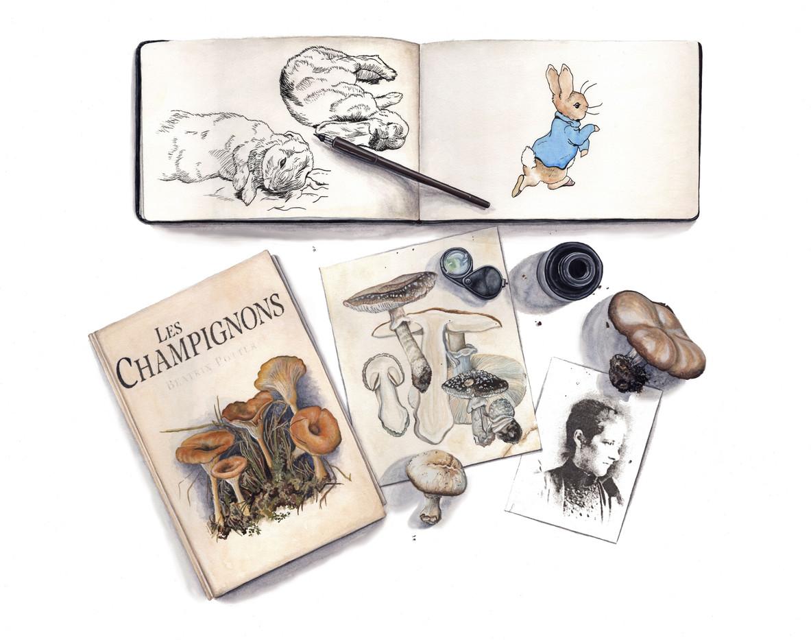 Beatrix Potter Themed Trompe l'oeil