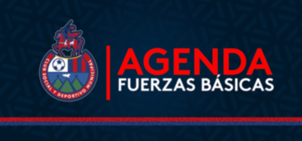 AGENDA_FUERZAS_BÁSICAS.png