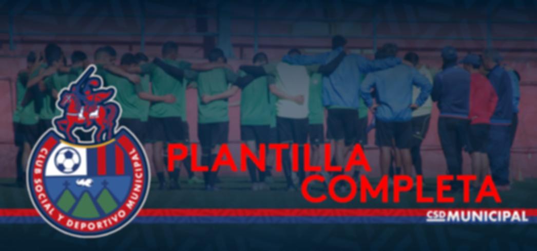 PLANTILLA COMPLETA AZUL.png