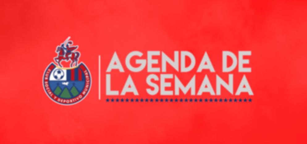 AGENDA SEMANAL (4).png